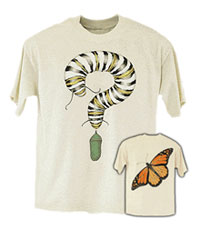 Monarch Metamorphosis T-shirt