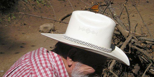 monarch on guide's hat